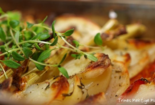 Image: Grønnsaksform – ypperlig til grillmat!