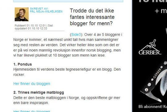 Image: 10 blogger for menn