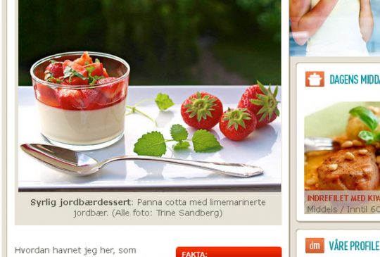 """Image: """"Tilfeldigvis blogger"""" – artikkel i Aftenposten 25. juni"""