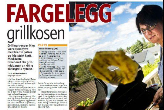 Image: Fargerikt grilltilbehør i Dagbladet
