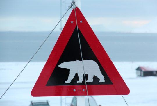 """Image: Høydepunkter fra Svalbardturen + middag på """"Funken"""""""