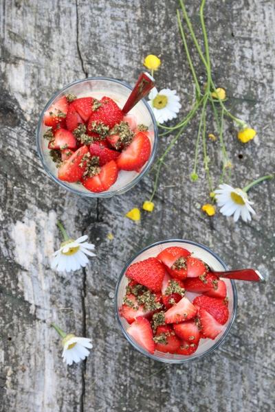 Panna cotta med jordbær og myntepesto