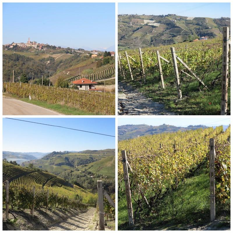 2014-10 Piemonte dag 21