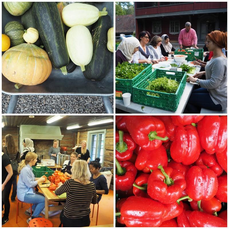 Trines matbloggs innsamling