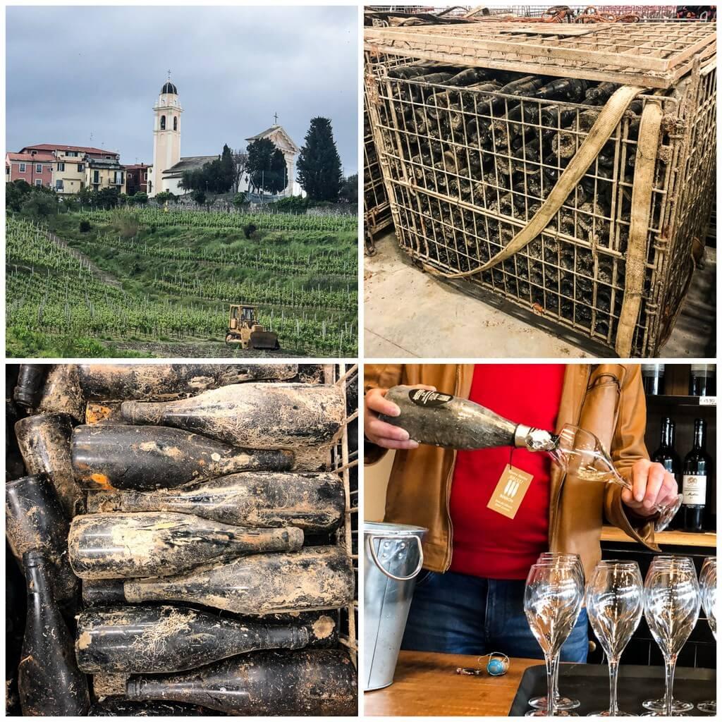 Matreise Liguria - vinsmaking